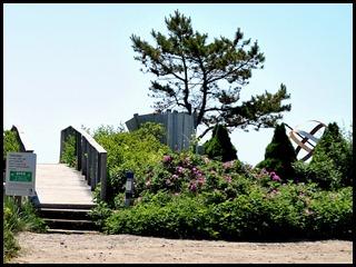 03j - Barrier Beach Trail - Beach Access