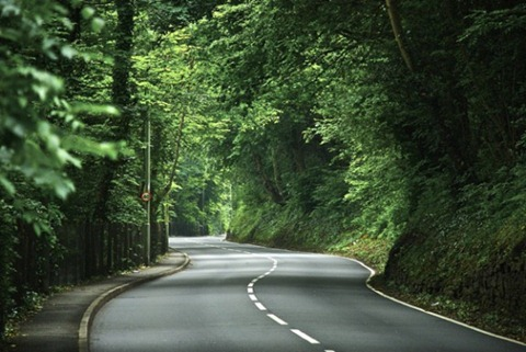 The-Leafy-Road-to-Llantrisant