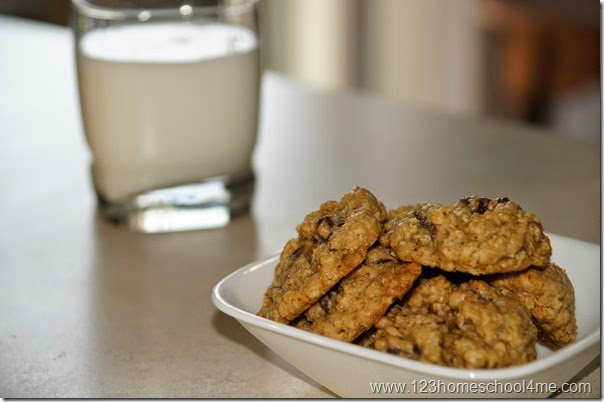 family favorite oatmeal chocolate chipo cookie recipe