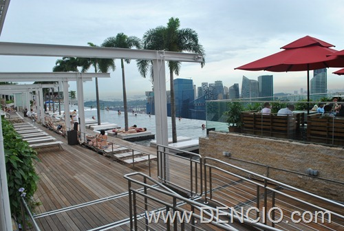 Marina Bay Sky Park and Infinity Pool10