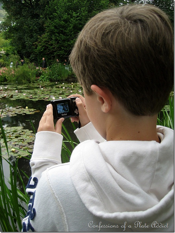 photographing waterlilies