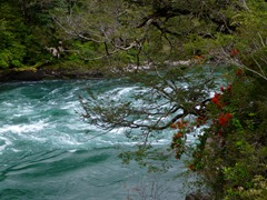 The mighty Futaleufu river, Chile.