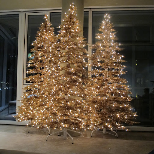 The trees light up my living room -- now it is time to start decorating them!