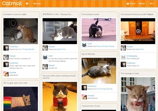 Rede social gatos Catmoji 01