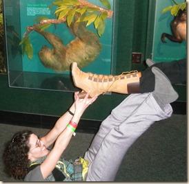 sloth katrina