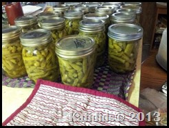 2013 greenbeans first canning