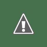 Tady byl ještě nedávno dřevák - uklizené tábořiště