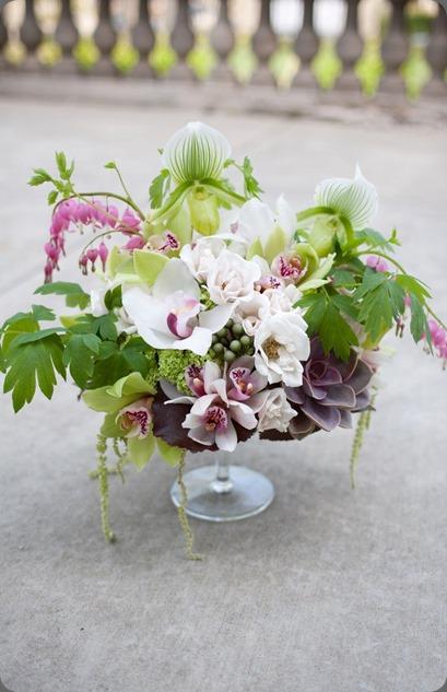 399105_10151006956900957_1180619675_n flora bella and emma freeman photo