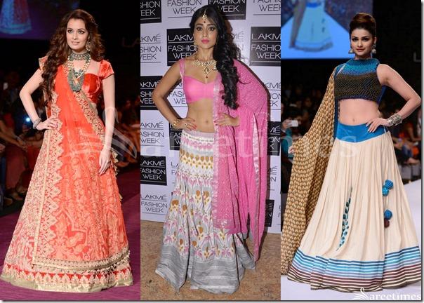 Bollywood_Sarees_2013(18)