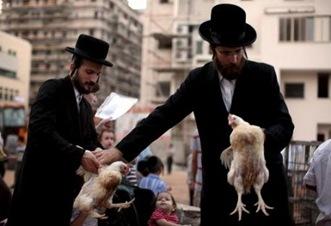 judios-ortodoxos.galeria