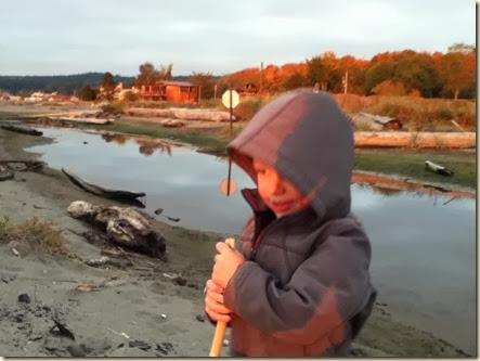 Maxwelton beach 039