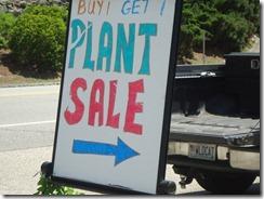 SGC Plant Sale 2011 037
