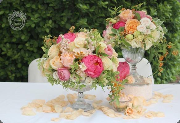 390239_175017589309414_1263581948_n divine floreal
