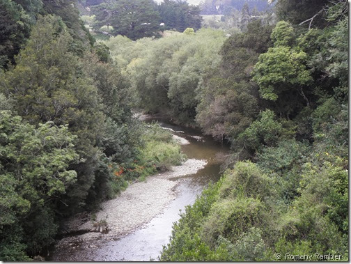 River Scene Ekatahuna