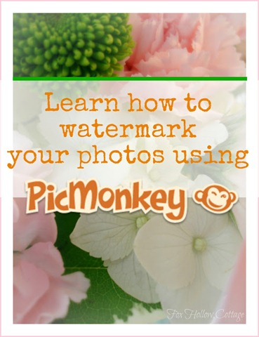How To Watermark with PicMonkey