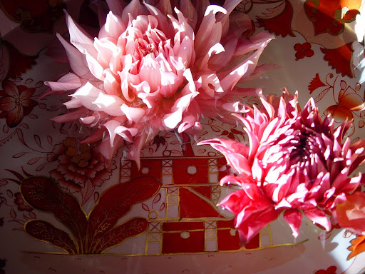These dahlias are so beautiful they could have been painted!