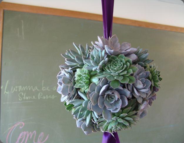 DSC05573 rosehip floral