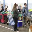 IMG_2646.JPG - der französische Hund