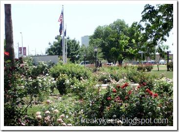 MCC Rose Garden 23