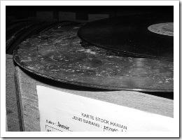 vinyl berjamur