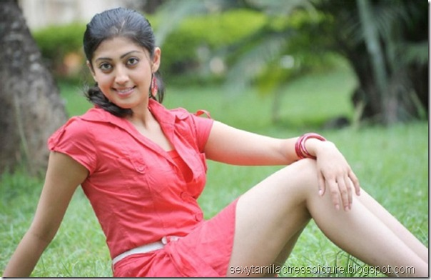 hot-saguni-praneetha-leg-picture