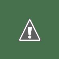 pic16f88 control board 1.JPG