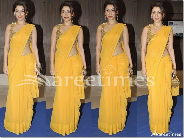 Manjari_Phadnis_Yellow_Plain_Saree