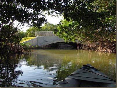 kayaking at Curry Hammock State Park, mangroves