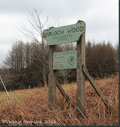 1-Barloch-wood-sign