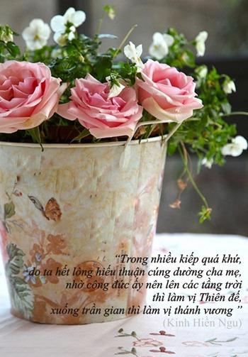 thiep-vu-lan-bao-hieu-cha-me (8)