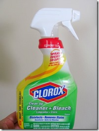 Clorox Clean up