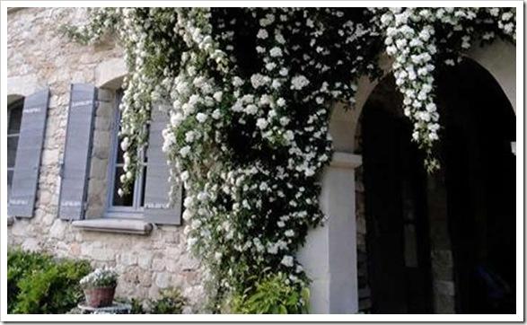 Luxury-villa-france-provence-notre-dame-05