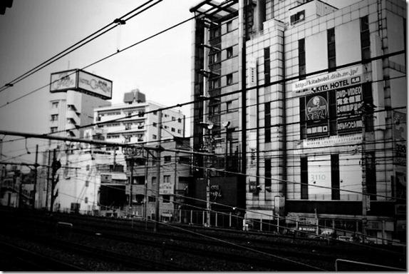 negishi002-001