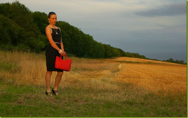 little black dress in golden field