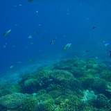 2012-05-07 Snorkeling in Gili Islands