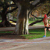2012 Chase the Turkey 5K - 2012-11-17%252525252021.09.05-2.jpg