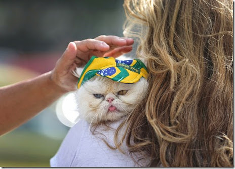world-cup-fans-012