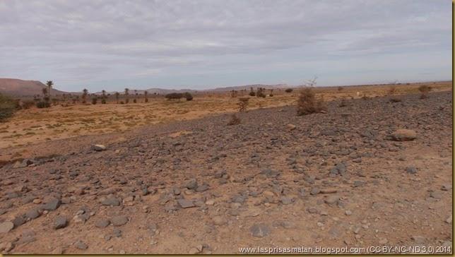 Desierto-326