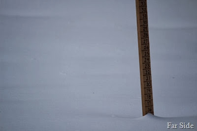 Five plus inches of new snow