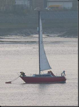 estuary 018