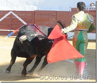 ©Dolores de Lara (19)
