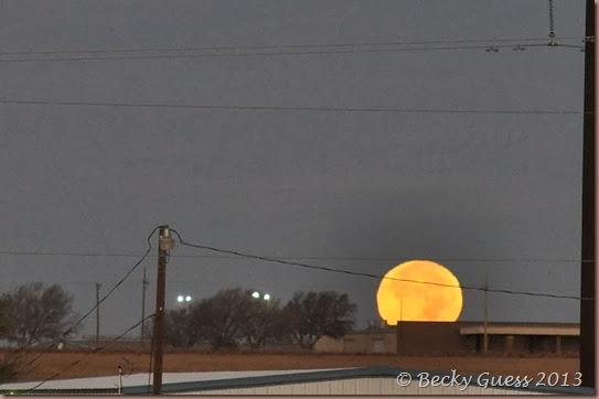 11-17-13 moon 66
