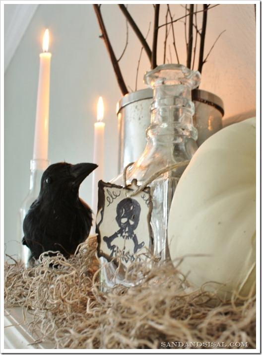 Poison bottle & crow