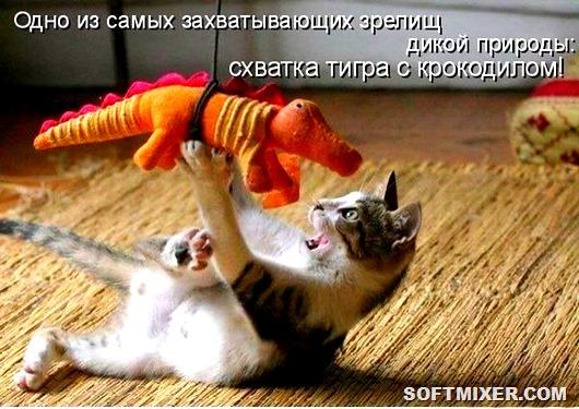 gfL5vYIB6sk