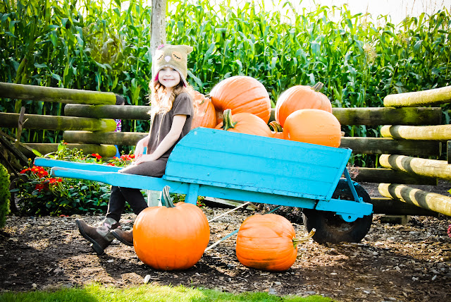 January/February 2012 - 2nd Place/ Miss Faith in the pumpkin barrow at Stoney Ridge Farm./ Credit: Michelle Rainey
