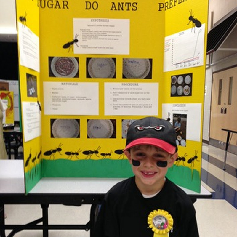 Science Fair Projects 4th Grade Science Fair Projects Preventing