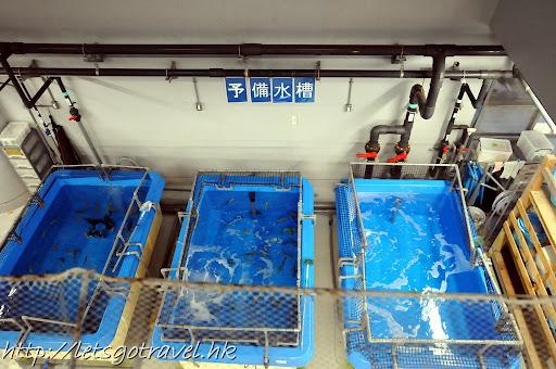 20111228okinawa645.JPG