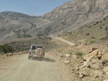 24. Sosele forestiere Oman.JPG