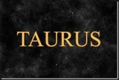 Taurus-13