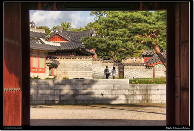Korea183